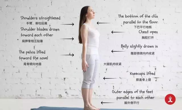 28张瑜伽体式解锁细节图(收藏级),正位练习很重要!
