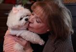 美女子给爱犬留千万遗产 对儿子们一毛不拔