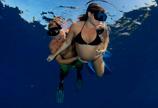 孕妇下海引来海豚同游